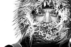 Minds that thrive in sub-zero conditions